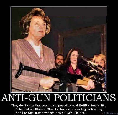 feinstein_anti-gun_shooter2-400o