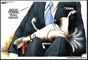 DEM-MSM-Media-Bias-Lapdoggies